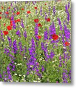 Poppy And Wild Flowers Meadow Nature Scene Metal Print
