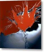 Poppy Explosion Metal Print
