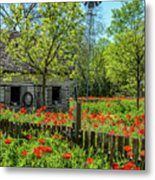 Poppy Farm Metal Print