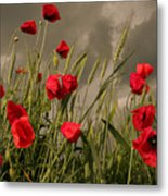Poppy Field Before The Storm Metal Print