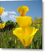 Poppy Flower Meadow 7 Poppies Blue Sky Artwork Baslee Troutman Metal Print