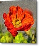 Poppy - Id 16235-142749-5072 Metal Print