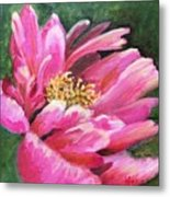Poppy Melody Metal Print
