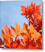 Popular Autumn Art Red Orange Fall Tree Nature Baslee Troutman Metal Print