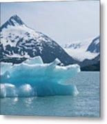 Porter Glacier Alaska II Metal Print