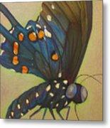 Portrait Of A Butterfly Metal Print