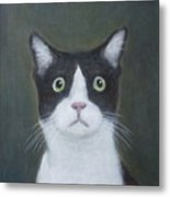 Portrait Of A Cat Metal Print