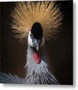 Portrait Of A Crowned Crane 2 Metal Print