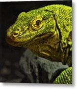Portrait Of A Komodo Dragon Metal Print