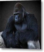 Portrait Of A Male Gorilla Metal Print