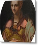 Portrait Of A Richly Dressed Lady Metal Print