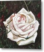 Portrait Of A Rose 3 Metal Print