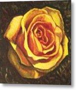 Portrait Of A Rose 5 Metal Print
