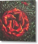 Portrait Of A Rose 6 Metal Print