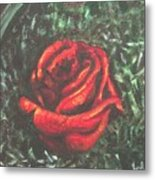 Portrait Of A Rose Metal Print