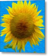 Portrait Of A Sunflower Metal Print