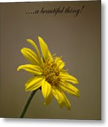 Portrait Of A Wildflower 3 Metal Print