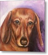 Portrait Of Fritz - Commissions Accepted Metal Print