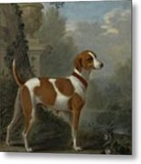Portrait Of The Duke Of Hamilton Hound Metal Print
