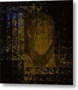 Portrait Reflection From Fresnel Prisms Metal Print
