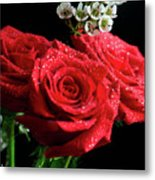 Posey Of Roses Metal Print by Tracy Hall