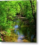 Potamac River In Maryland Metal Print