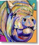 Potbelly Metal Print