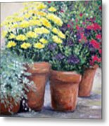 Pots In Bloom Metal Print