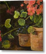 Pots Of Geraniums Metal Print