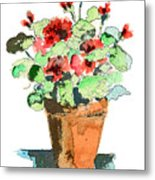 Potted Geraniums Metal Print