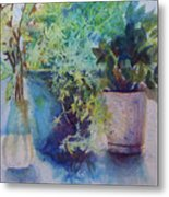Potted Plant Study Metal Print