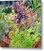 Potted Succulents Metal Print
