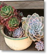 Potty For Plants Metal Print