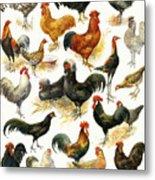 Poultry Metal Print