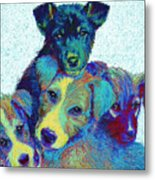 Pound Puppies Metal Print by Jane Schnetlage