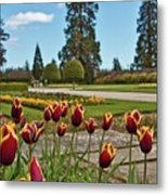 Powerscourt Estate 9 Metal Print