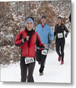Pprr 2016 Winter Series I 3115 Metal Print