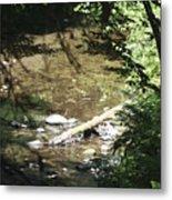 pr 134 - Babbling Brook Metal Print