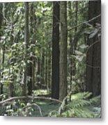 pr 138 - Frolicking Trees Metal Print