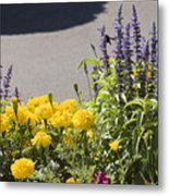 pr 141 - Flower Bed Metal Print