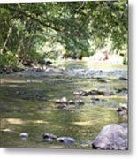 pr 164 - Mountain River Metal Print