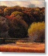 Prairie Autumn Stream Metal Print