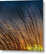 Prairie Grass Sunset Patterns Metal Print