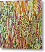 Prairie Grasses Metal Print