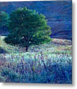 Prairie Trees Impressionistic Grunge Metal Print