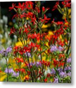 Prairie Wildflowers 2 Metal Print