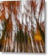 Praise You In This Storm Metal Print