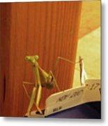 Praying Mantis II Metal Print