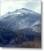 Presidential Mountain View Metal Print