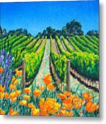 Presidio Vineyard Metal Print